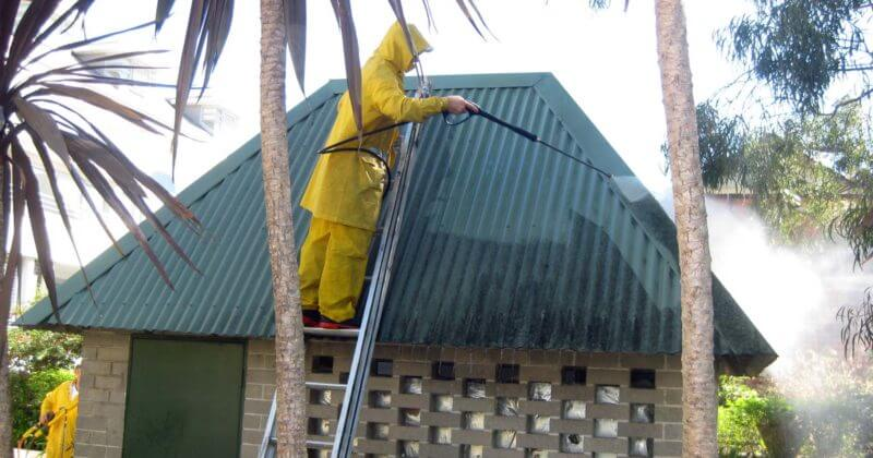 house-washing-northern-beaches